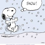 Snowlover51
